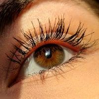 Lynn Valley Optometry: Eye Wellness